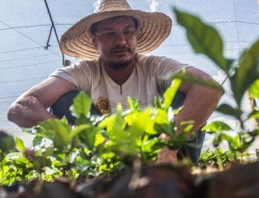 Agricultura Familiar é setor estratégico para desenvolvimento sustentável
